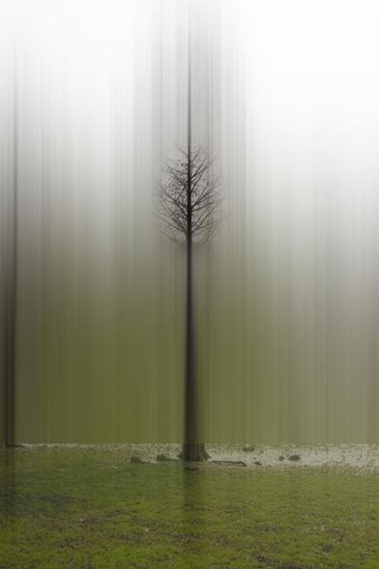 Ellen Jantzen, 'Promise of Summer', 2013, Bruno David Gallery