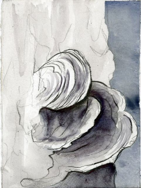 Jim Holyoak, 'Fungus', Year Unknown, Drawing, Collage or other Work on Paper, India ink, bG Gallery