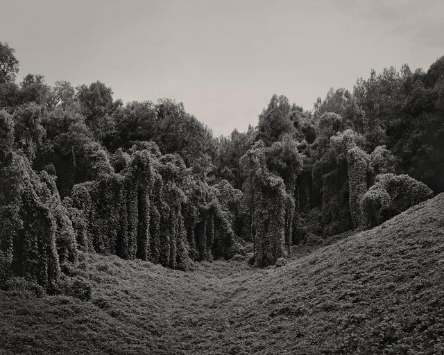 , 'Alabama Fields,' 2012, Willas Contemporary