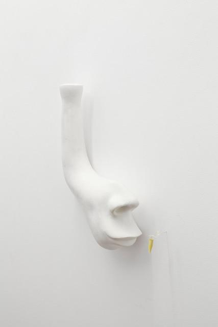 , 'Nose,' 2014, Dawid Radziszewski