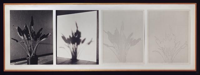 Charles Gaines, 'Shadows II, Set 1', 1980, Hammer Museum
