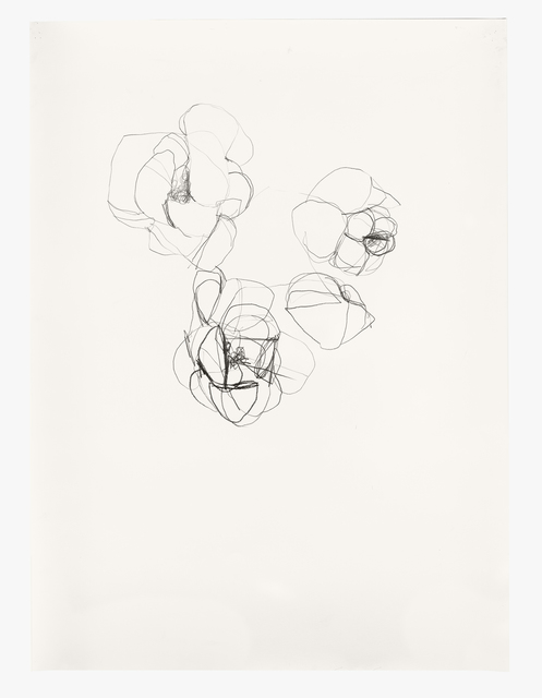 Andrea Rosenberg, 'Untitled 30.18', 2018, Painting, Graphite on paper, Barry Whistler Gallery