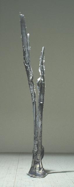 """, 'Split Strike - 37°21'04.5""""N 105°06'22.2""""W,' 1995, C. Grimaldis Gallery"""