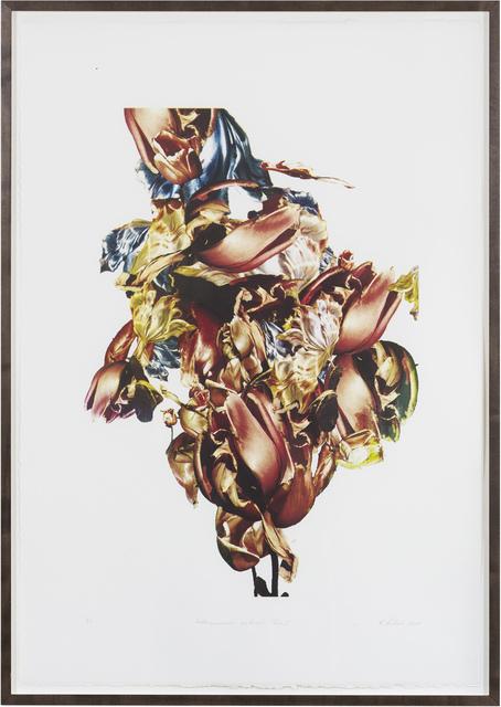 , 'Metamorphosis Naturalis - Tulip I,' 2018, BBA Gallery