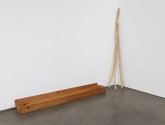 , 'Box with willow sticks hollowed out and filled with sage,' 1974-1975, di Rosa