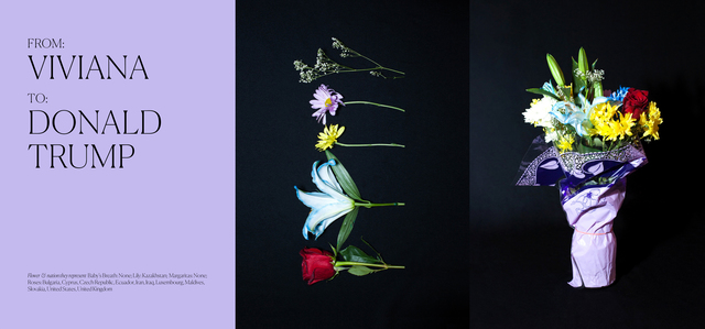, 'Flowers for Immigration: Viviana (Pueblo, Mexico),' 2017, Project for Empty Space