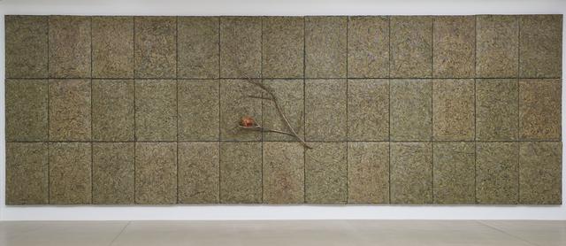 Giuseppe Penone, 'Respirare l'ombra', 2008, Marian Goodman Gallery