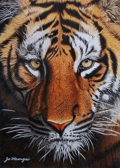 Josie Mengai, 'Panthera Tigris ', 2013, Ligia Testa Espaço de Arte