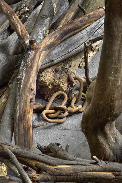 , 'Log Dog (detail),' 2013, Punta della Dogana