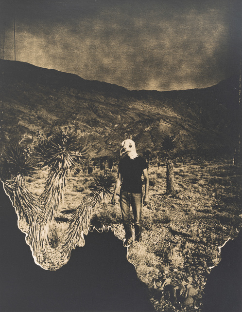 Lara Porzak, 'The Eagle has Landed', 2013, Photography, Gelatin silver lith print from Polaroid negative, The Spaceless Gallery