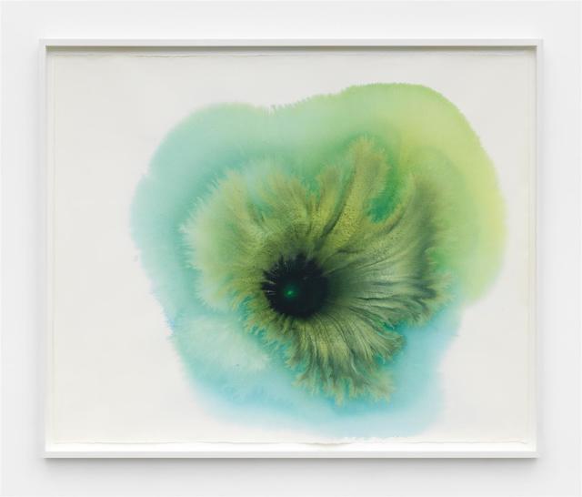 , 'portraits of a cyanobacteria,' 2018, Marianne Boesky Gallery