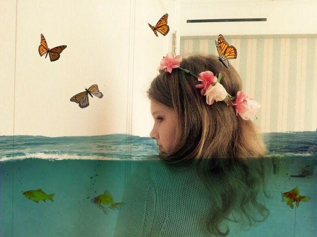, 'Butterflies & Fish ,' 2015, Ricco/Maresca Gallery
