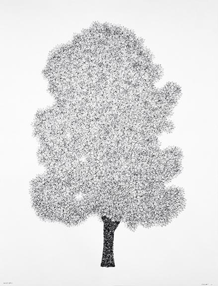 , 'Silver Maple,' 2017, David Lusk Gallery