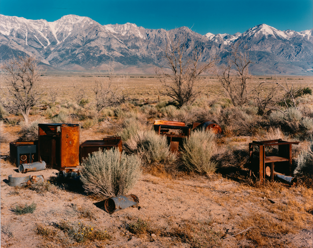 Laura McPhee, 'Apple Orchard, Manzanar Japanese-American Relocation Camp, Owens Valley, California, 1995, from the series No Ordinary Land', 1995, San Francisco Museum of Modern Art (SFMOMA)
