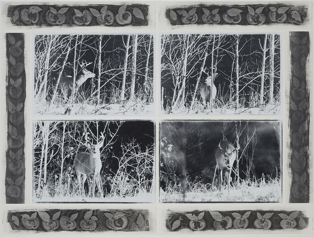 Carol Marino, 'Apple Buck', 1992, Print, Quadriptych: four gelatin toned silver prints mounted to a white paper support surrounded by 6 waterbased stencilled strips of apples mounted to decorate the borders, Waddington's