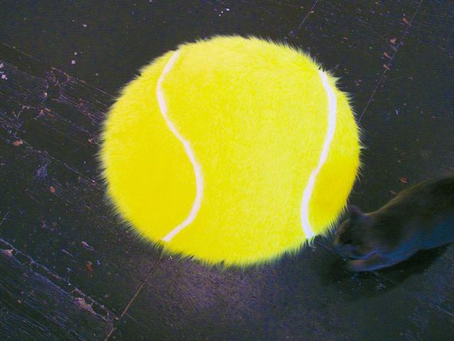 , 'Tennis,' 2015, Emily Davidson + Stuart Lorimer