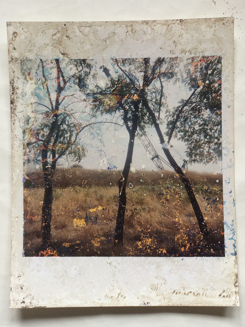 , 'Untitled, from the series 'Buried',' 2006, CHRISTOPHE GUYE GALERIE