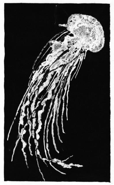 , 'Jellyfish I,' 2003, InLiquid