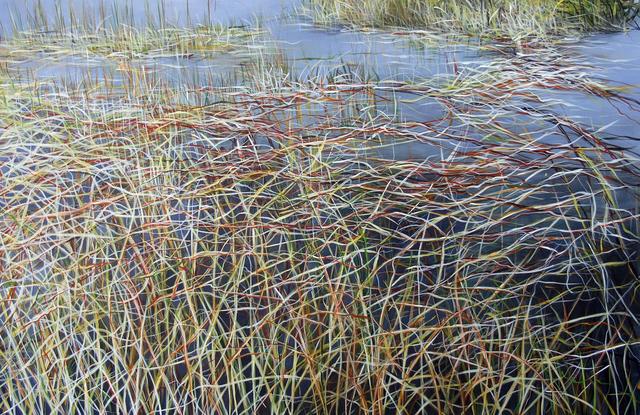 , 'Everglades III,' 2011, Rosenbaum Contemporary
