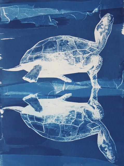 , 'Turtle Crossing,' 2016, ArtHelix Gallery