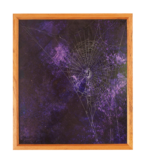 , 'Oh to be a spider on the day of the flies,' 2014, Jason Jacques Gallery