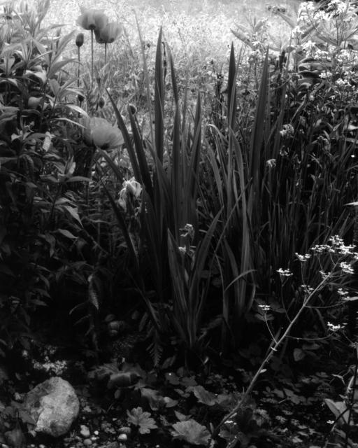 , 'Gartenstück Nr. 08,' ca. 2018, Galerie Jordanow