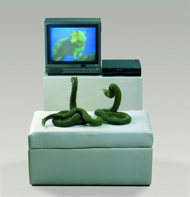, 'Cazadores Mediaticos (Media Hunters),' , MAMAN Fine Art Gallery