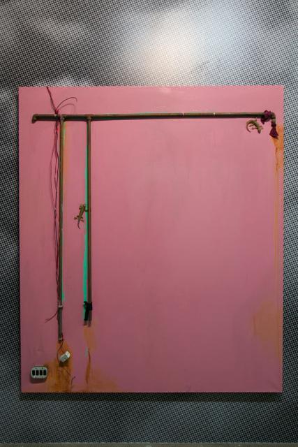 Huma Mulji, 'Memory of a Pink', 2012, Gwangju Biennale