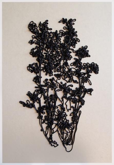 , 'Black Rose,' 2016, William Shearburn Gallery