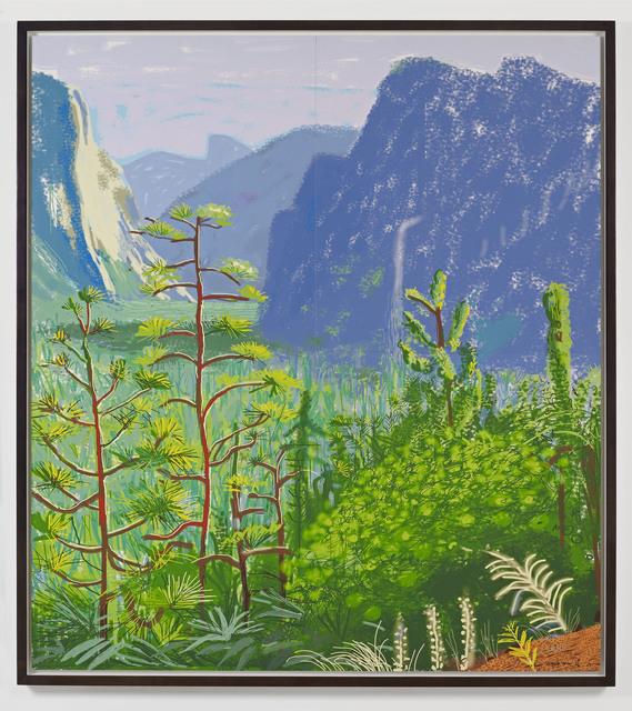 David Hockney, 'Yosemite 1, October 16th 2011', 2011, DELAHUNTY