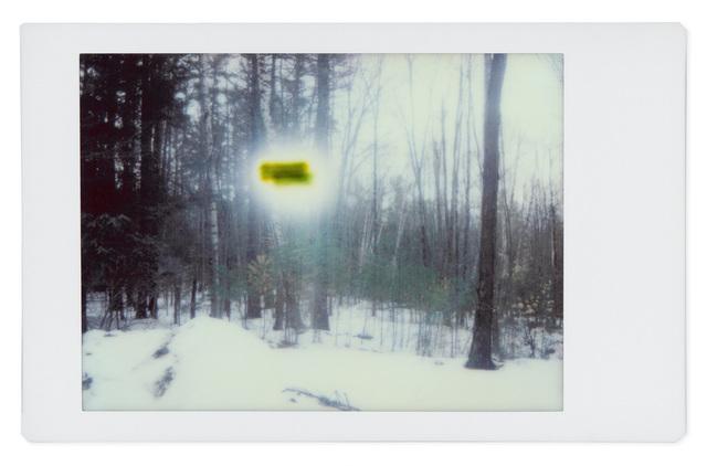 , 'Alien 8,' 2017, Robert Klein Gallery