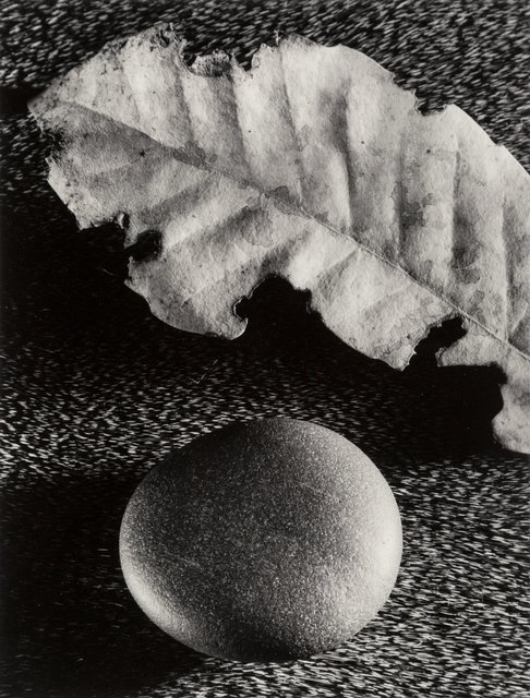 Ruth Bernhard, 'Leaf and Stone', 1959, Heritage Auctions