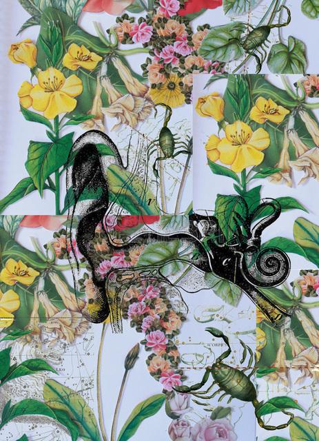 Francine Alves, 'Insect Print', 2018, Rare Tempo
