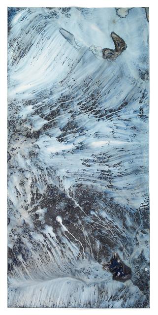 , 'Ecotone #455 (Bainbridge Island, WA 05.25.19, Throughfall from Magnolia, Draped on Stone Wall),' 2019, Haines Gallery