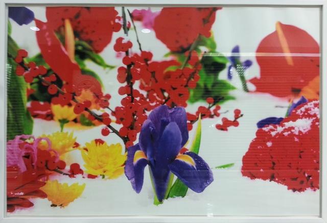 Marc Quinn, 'Untitled', 2005, Galerie Antoinette