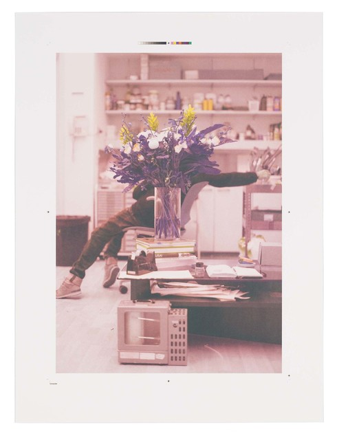, 'Portrait of a blind artist obscured by flowers,' 2014, STPI
