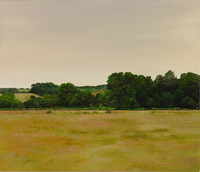 , 'The Field Next to Tesco II,' 2017, bo.lee gallery