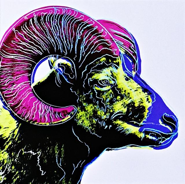 Andy Warhol, 'Bighorn Ram ', 1987, Alpha 137 Gallery