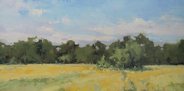 , 'Field of Yellow,' , Davis Gallery & Framing