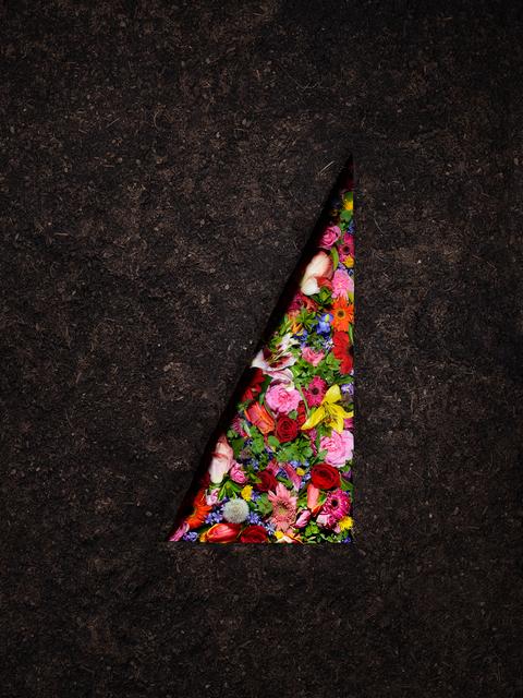 , 'Dirt and Flowers,' 2017, Winston Wächter Fine Art