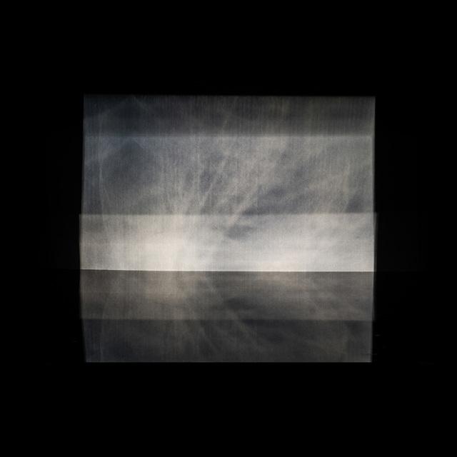 , 'Five elements - Wood,' 2018, Alter Gallery   Studio