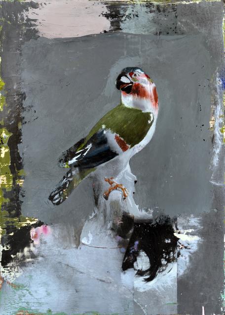 , 'Parrot,' 2018, Ncontemporary