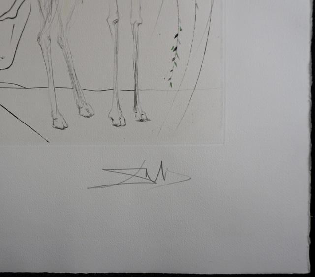 Salvador Dalí, 'Hamadryades Mimetiques Arborescentes', 1971, Print, Etching, Fine Art Acquisitions Dali