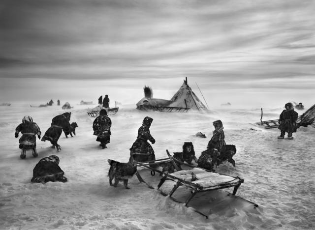 Sebastião Salgado, 'Nenets, an indigenous nomadic people, whose main subsistence come from reindeer herding, South Yamal region, Siberia, Russia', 2011, Robert Klein Gallery
