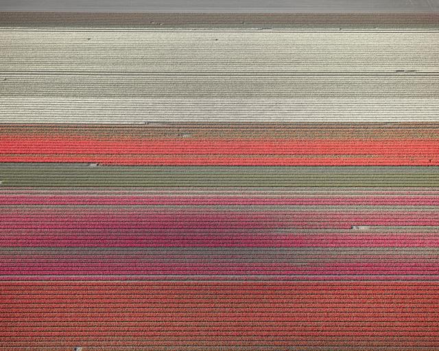 , 'Veld 10, Noordoostpolder, Netherlands,' 2016, Gilman Contemporary