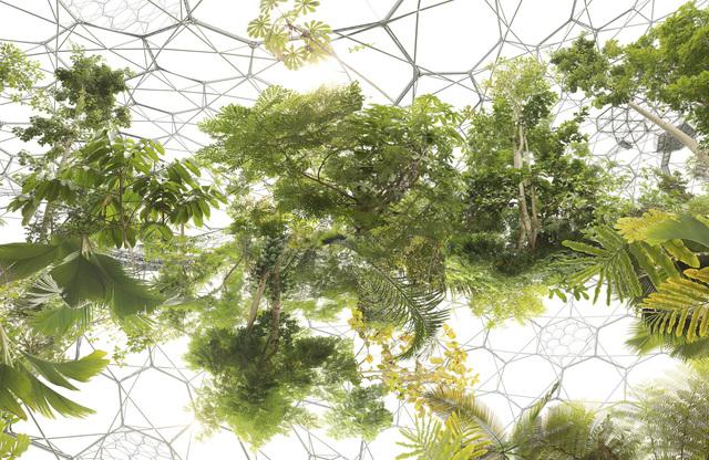 , 'Space Garden,' 2013, Bank/ Mabsociety