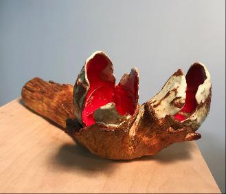 , 'Red Pods,' , Denise Bibro Fine Art