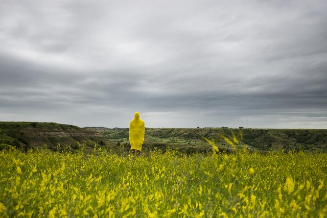, 'Alan (Badlands),' 2015, Galleri Urbane