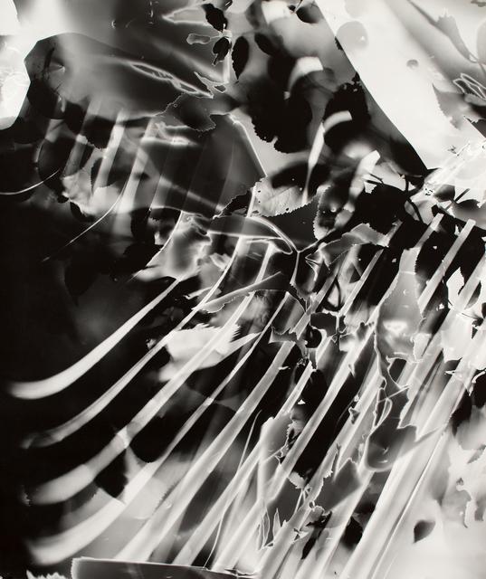 , 'Nachtbild (301),' 1991, Von Lintel Gallery