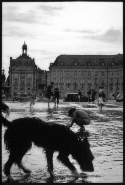 , 'Bordeaux Fountain,' 2016, Danziger Gallery